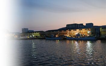 鮮度維持のため、水揚げ当日に港から5分の工場で加工