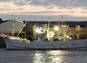 せこかに漁船