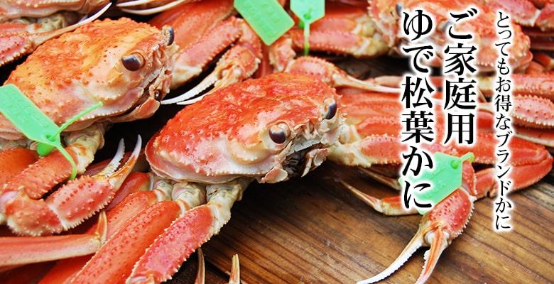topbnr__matsuba_katei-min.jpg